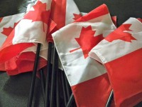 image of Canadian flags.